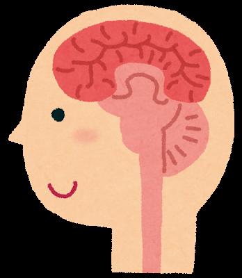脳脊髄液の圧迫がないイラスト.png